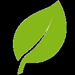 leaf32-green-150x150